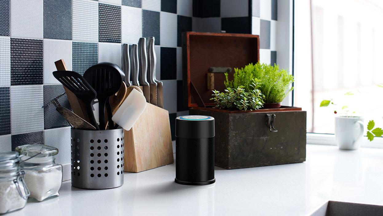 Portable Speaker for Echo Dot